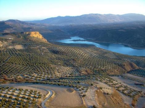 Orodeal landscape